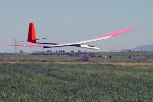 Maxa-F3J-glider-56